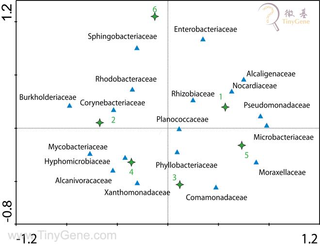 水源微生物多样性分析