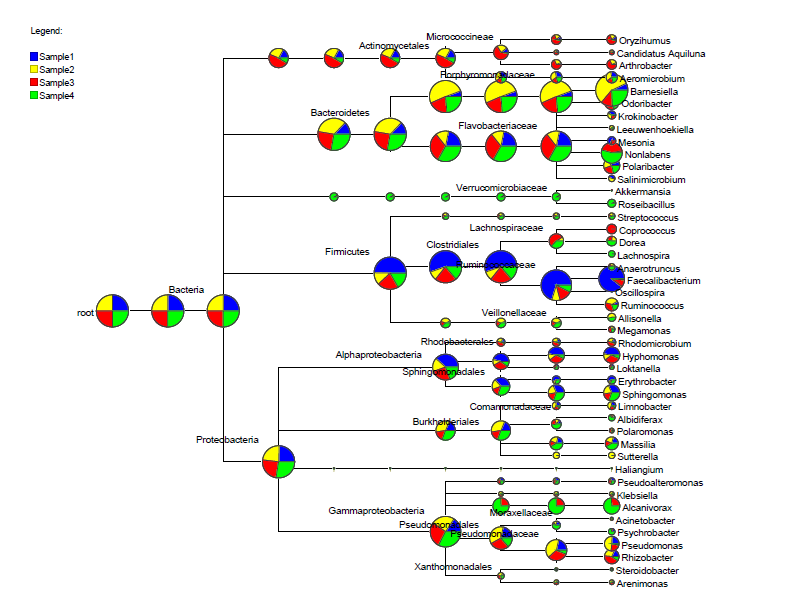 Multi samples Taxonomy analysis tree