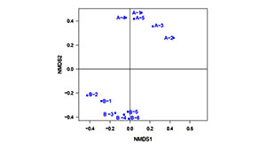 NMDS非度量多维尺度分析- 微基生物