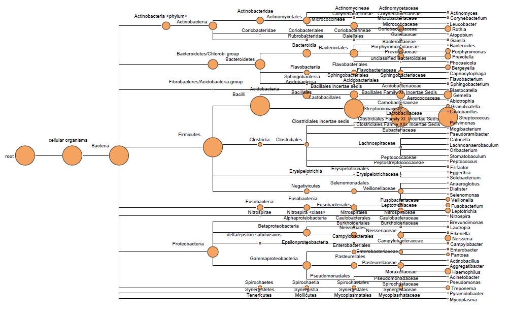 single samples Taxonomy analysis tree