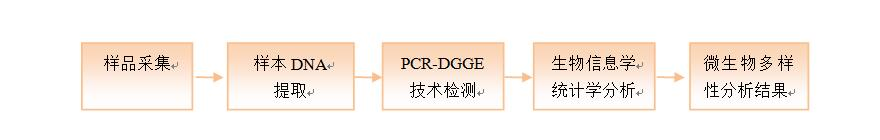 PCR-DGGE technical route