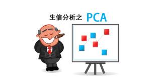 PCA cartoon