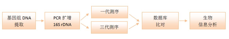 identification-line