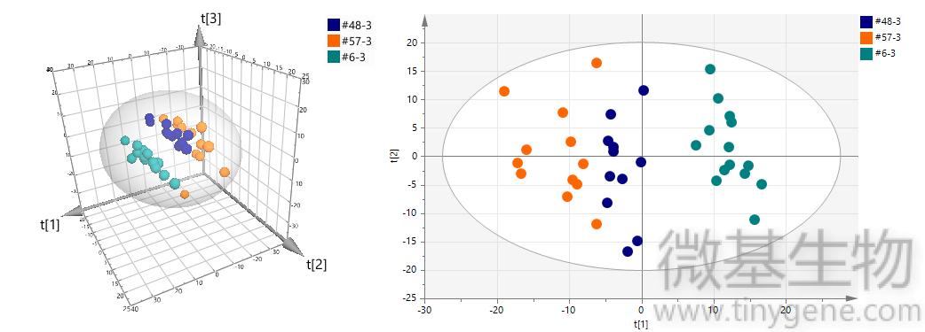 图1上,PCA,PLS-DA,分析,多元,组图,整体,样本特性