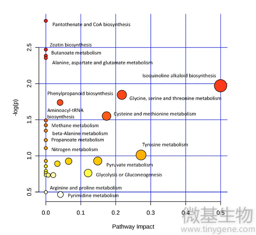图3上,代谢通路,影响因子,分析