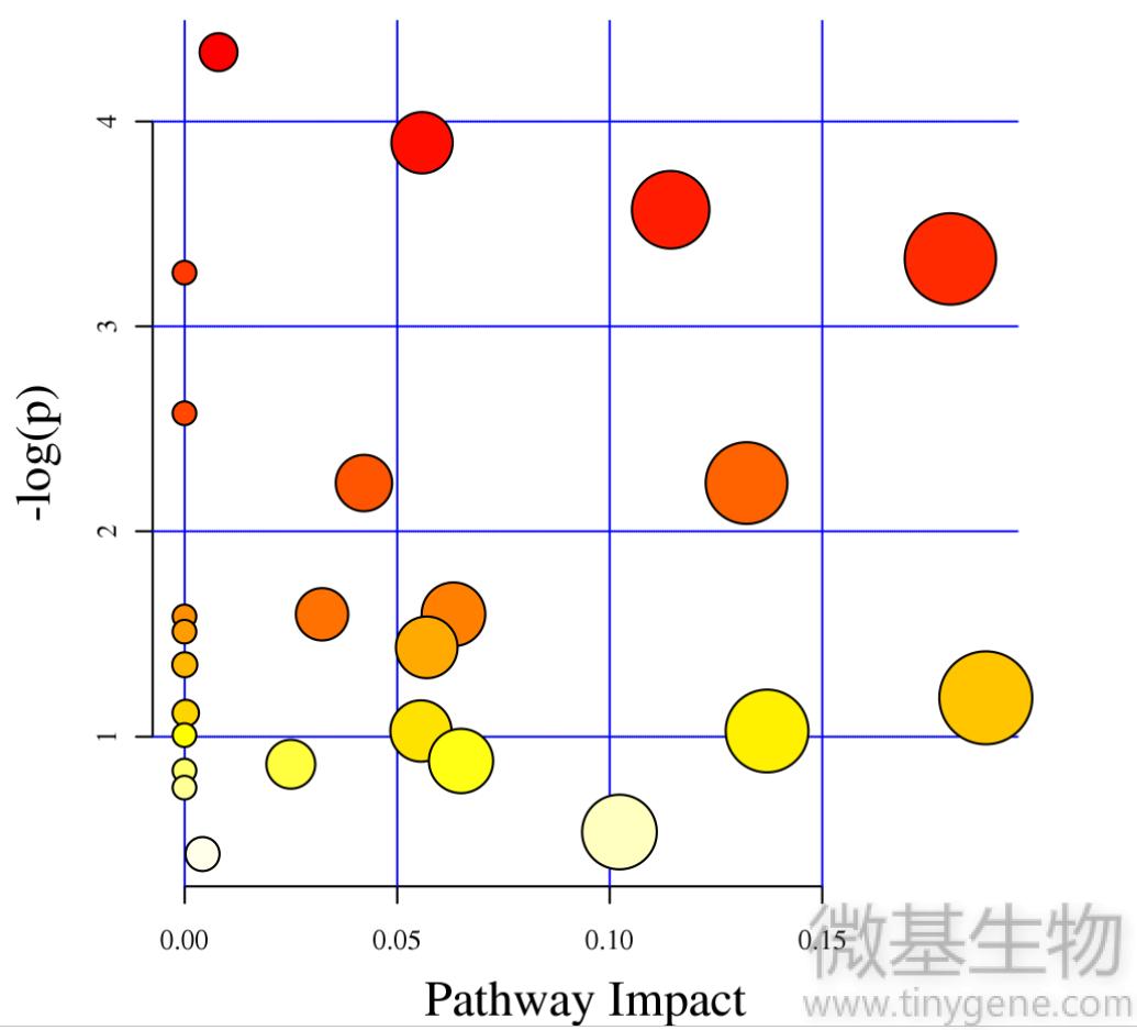 图6,代谢通路,影响因子,分析