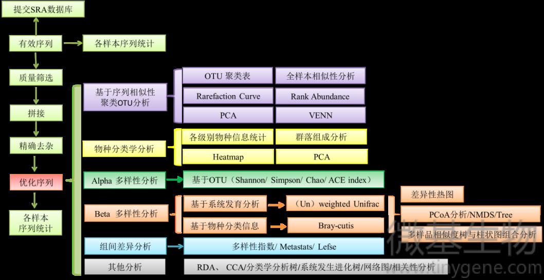 生物信息分析流程